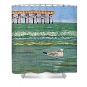 Lone Gull A-piers Shower Curtain