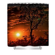 Lone Manzanita Sunset Shower Curtain