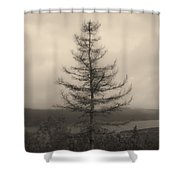 Lone Pine And The Bras D'or Shower Curtain