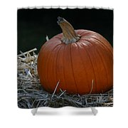 Lone Pumpkin Shower Curtain