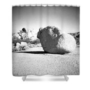Lone Rock Shower Curtain