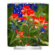 Lone Star Blooms Shower Curtain