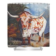 Lone Star Longhorn Shower Curtain