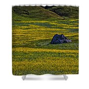 Lone Stone Shower Curtain
