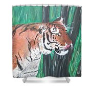 Lone Tiger Shower Curtain