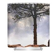 Lone Tree 11351 Shower Curtain