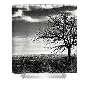 Lone Tree 2 Shower Curtain