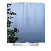 Lone Tree By The Water In Acadia National Park Shower Curtain