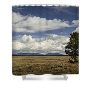 Lone Tree In The Grand Teton National Park Shower Curtain