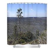 Lone Tree Kilauea Crater Shower Curtain