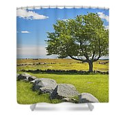 Lone Tree With Blue Sky In Blueberry Field Maine Shower Curtain