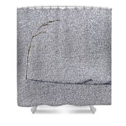 Lone Weed Shower Curtain