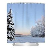Lone Winter Spruce - Alaska Shower Curtain