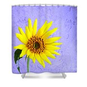 Lone Yellow Daisy Shower Curtain
