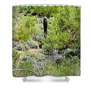 Lonely Little Saguaro Shower Curtain