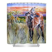 Lonely Lobo Sunset Shower Curtain