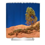 Lonely Pine On The Ocher Hill Shower Curtain