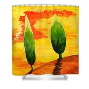 Lonely Planet Shower Curtain