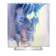I Hope There Is Hope For A Lonely Pony Shower Curtain