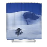 Lonely Tree In Winter Yellowstone National Park Shower Curtain
