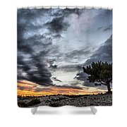 Lonely Tree Shower Curtain by Okan YILMAZ