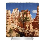 Lonely Trees Shower Curtain