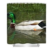 Lonesome Duck Shower Curtain