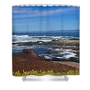 Lonesome Gull Shower Curtain