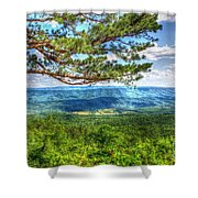 Lonesome Pine Shower Curtain