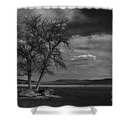 Lonesome Tree Shower Curtain