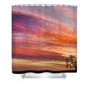 Lonesome Tree Sunrise Shower Curtain