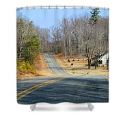 Long About Now Shower Curtain