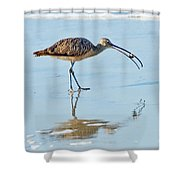 Long-billed Curlew With Crab Shower Curtain