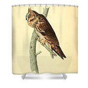 Long Eared Owl Shower Curtain