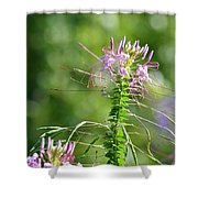Long Lavender Fingers Shower Curtain
