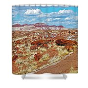 Long Logs Trail In Rainbow Forest In Petrified Forest National Park-arizona  Shower Curtain