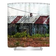 Long Since Abandoned - Back To Nature Shower Curtain