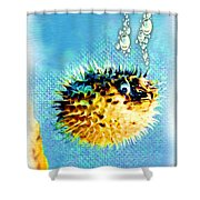 Long-spine Fish Shower Curtain