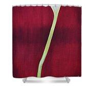 Long Tall Calla Shower Curtain
