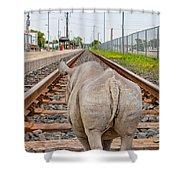 Rhino On A Railway Track Shower Curtain