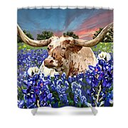 Longhorn In Bluebonnets Shower Curtain