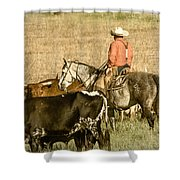 Longhorn Round Up Shower Curtain
