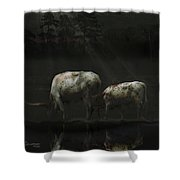 Longhorns Reflections At The Pond Shower Curtain