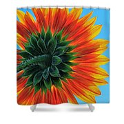 Longing For Summer Shower Curtain