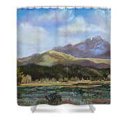 Long's Light Shower Curtain by Heather Coen