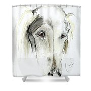 Loni Shower Curtain