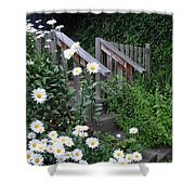 Look After The Daisies Shower Curtain