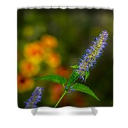 Look At Me Garden Shower Curtain