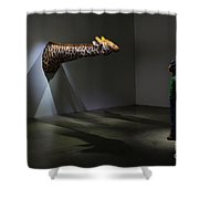 Look At You Looking At Me Shower Curtain