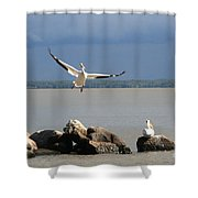 Look Ma - I Can Fly Shower Curtain